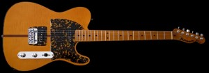 H.S. Anderson Madcat guitar